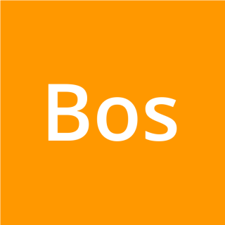Bossino